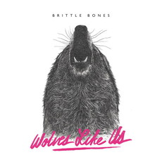 .RCN 233 CD Rezi POSTHARDCORE: WOLVES LIKE US - BRITTLE BONES